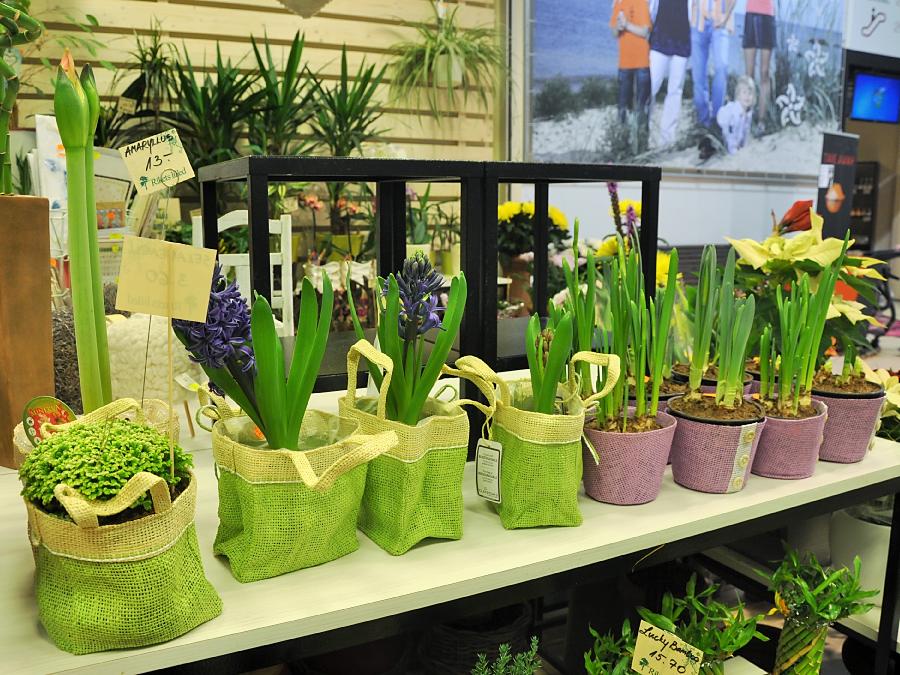 Rikets Lilled tootevalik Viimsi Kaubanduskeskuses